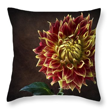 Starburst Dahlia Throw Pillow
