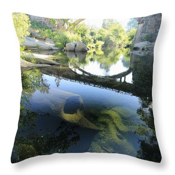Throw Pillow featuring the photograph Stargate  by Sean Sarsfield