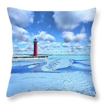 Throw Pillow featuring the photograph Steadfast by Phil Koch