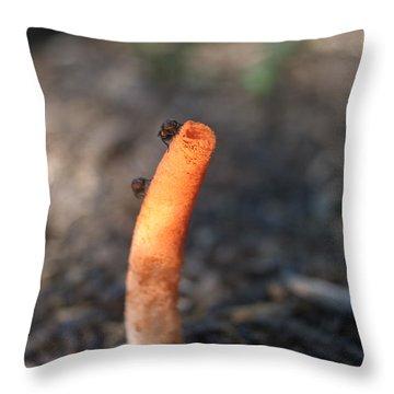 Stinkhorn And Flies Throw Pillow by Douglas Barnett