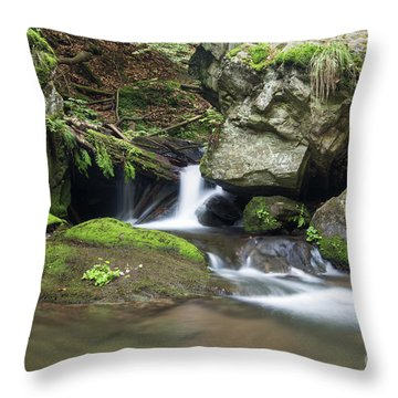 Throw Pillow featuring the photograph Stone Guardian Of The Waterfalls - Bizarre Boulder On The Bank by Michal Boubin