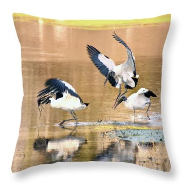Stork Rugby Throw Pillow