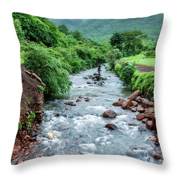 Throw Pillow featuring the photograph Stream by Charuhas Images