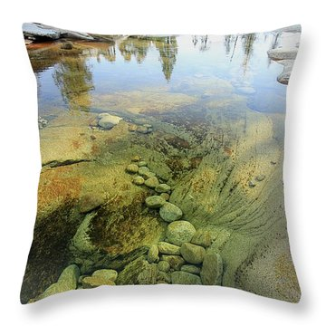 Throw Pillow featuring the photograph Stream Dreams by Sean Sarsfield