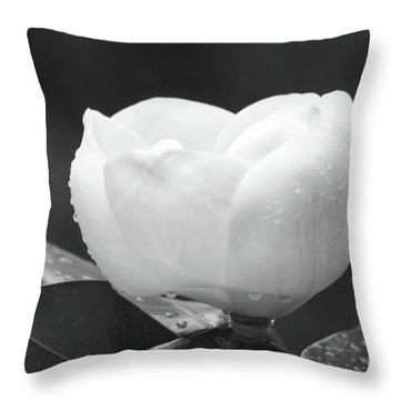 Study In Black And White Throw Pillow