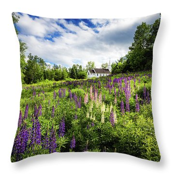 Throw Pillow featuring the photograph Sugar Hill by Robert Clifford