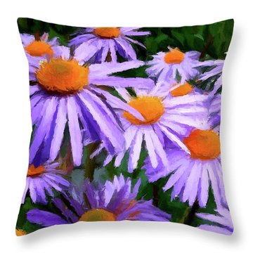Summer Dreaming Throw Pillow by David Dehner
