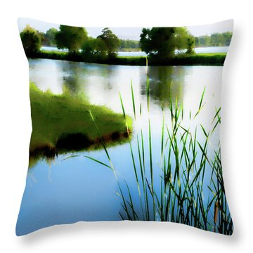 Throw Pillow featuring the mixed media Summer Dreams by Betty LaRue