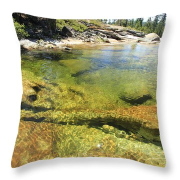 Throw Pillow featuring the photograph Summer Sweet Spot by Sean Sarsfield