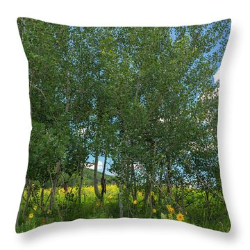 Throw Pillow featuring the photograph Summer Wildflowers by Tim Reaves