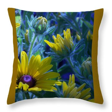 Sun Glory Series Throw Pillow