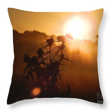 Sun Up Throw Pillow by Gary Bridger