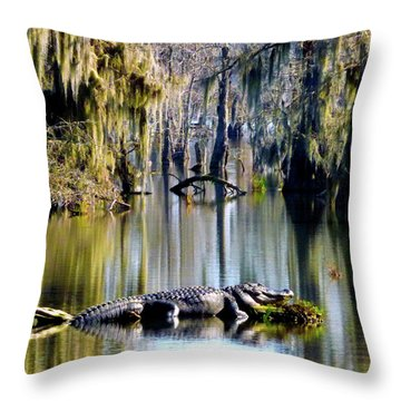 Sunbathing In January Throw Pillow