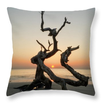 Sunrise On Driftwood Throw Pillow