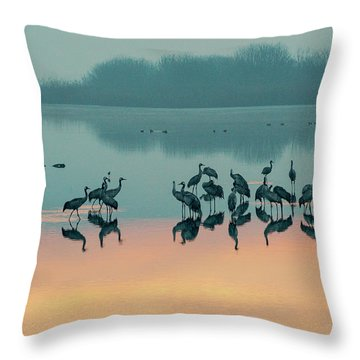 Sunrise Over The Hula Valley Throw Pillow by Dubi Roman
