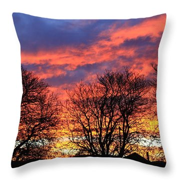 Throw Pillow featuring the photograph Sunset And Filigree by Nareeta Martin
