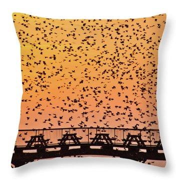 Sunset And Starlings In Aberystwyth Wales Throw Pillow