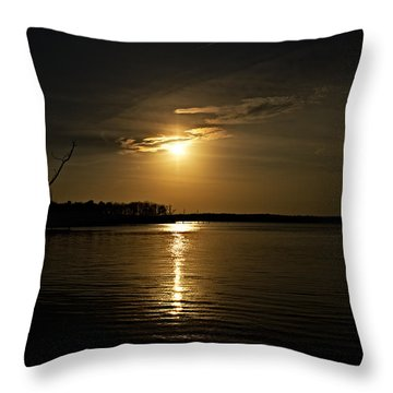 Throw Pillow featuring the photograph Sunset by Angel Cher