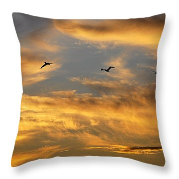 Sunset Flight Throw Pillow