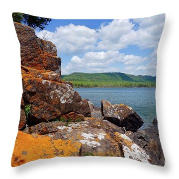 Superior Lichens Throw Pillow by Sandra Updyke