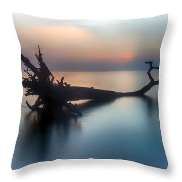 Surrounded Throw Pillow by Alan Raasch