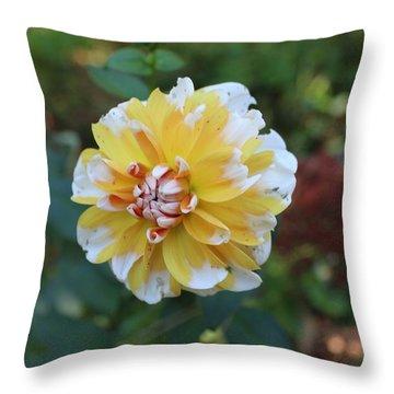 Susan's Day Lillies Throw Pillow