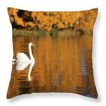 Swan On A Lake Throw Pillow