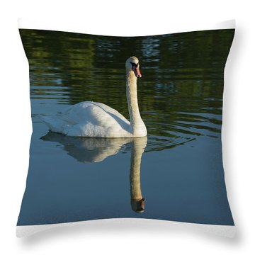 Swan Reflection Throw Pillow