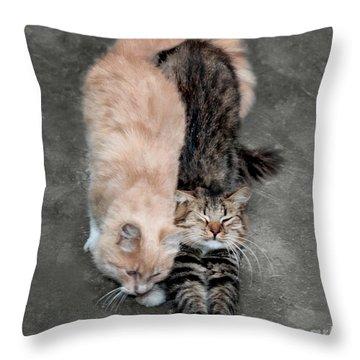 Sweet Couple Throw Pillow by Sergey Lukashin