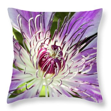 Sweet Nelly Throw Pillow
