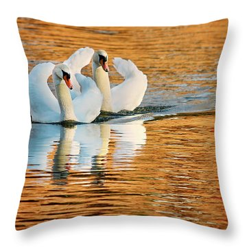 Throw Pillow featuring the photograph Swimming On Gold by Darren Fisher