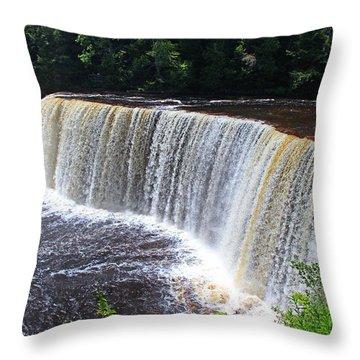 Tahquamenon Upper Falls IIi Throw Pillow by Michiale Schneider