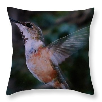 Tan Hummingbird Throw Pillow