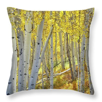 Throw Pillow featuring the photograph Telluride Aspens by Ray Mathis