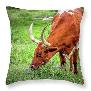 Texas Longhorn Grazing Throw Pillow