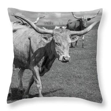 Texas Longhorns Throw Pillow
