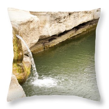 Throw Pillow featuring the photograph Texas - Mckinney Falls State Park  by Ray Shrewsberry