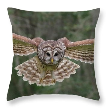 The Approach. Throw Pillow