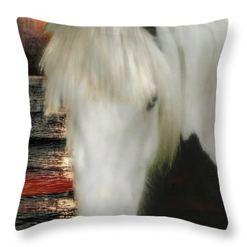 The Beautiful Face Of A Gypsy Vanner Horse Throw Pillow