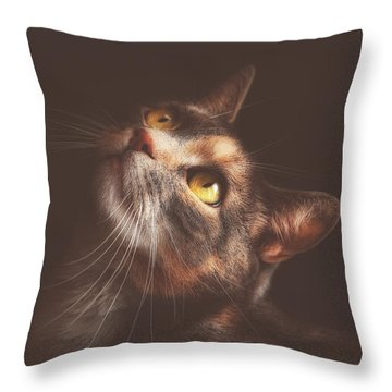 The Contessa Throw Pillow