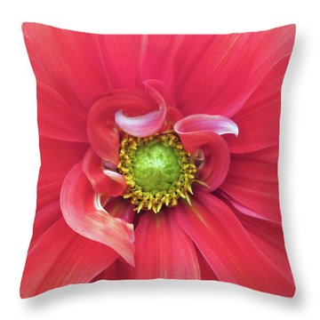The Dahlia Throw Pillow by Gwyn Newcombe