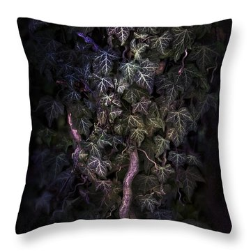 The Dark Side Throw Pillow by Agnieszka Mlicka