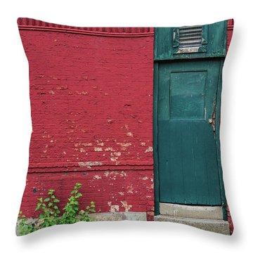The Door Throw Pillow