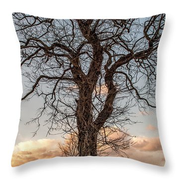 The End Of Another Day Throw Pillow