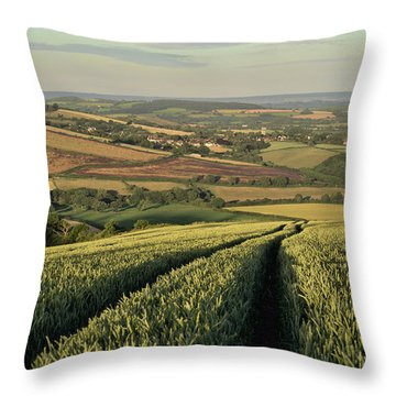 The Exe Valley Throw Pillow