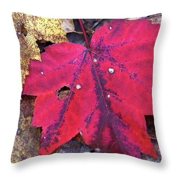 The Fallen 2 Throw Pillow