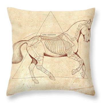 The Horse's Canter Revealed Throw Pillow