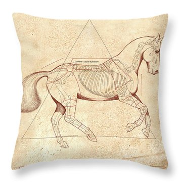 The Horse's Canter Revealed Throw Pillow by Catherine Twomey