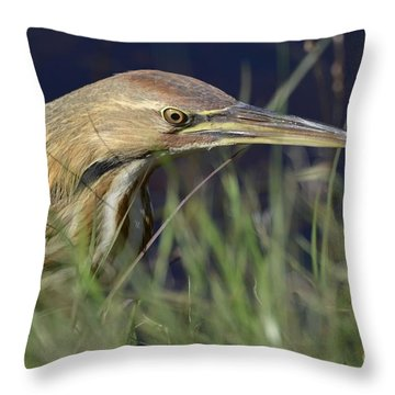 The Hunt Throw Pillow by Kathy Gibbons