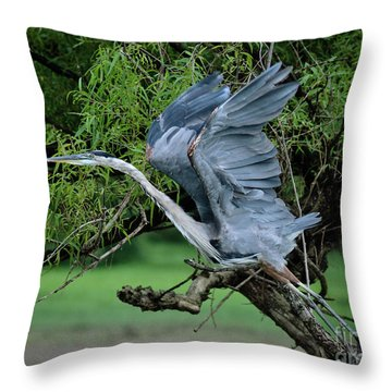 Throw Pillow featuring the photograph The Launch by Douglas Stucky